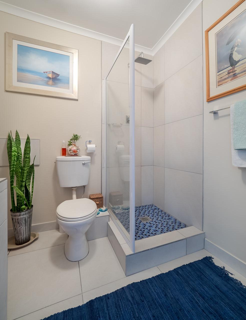 Výhody sprchových kútov